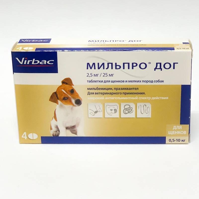 Мильпро дог для щенков и мелких собак, упаковка 4 таблетки петдог